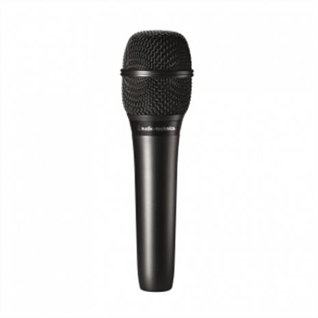Mikrofons  AT2010