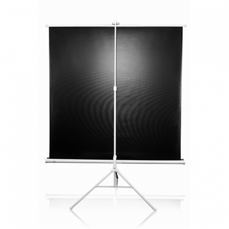 Projektora ekrāns  T113NWS1